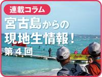 miyako_rensai_4.jpg