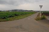 横須賀トライアスロン